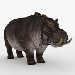Hippo Rigged and Animated 3D