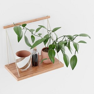 3D Asher Rope Hanging Wall Shelf model