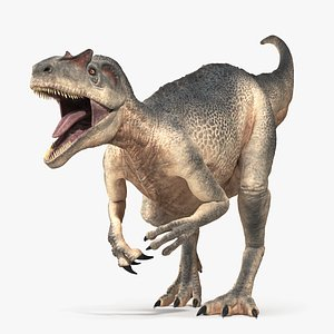 Allosaurus - Rigged and Animated 3D model