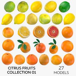 3D Citrus Fruits Collection 01 - 27 models model