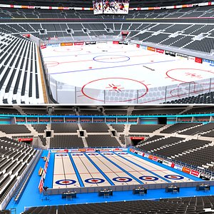 Hockey Arena and Curling Arena 3D model