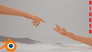 3D rigged human hands