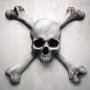 skull bone flag 3D model