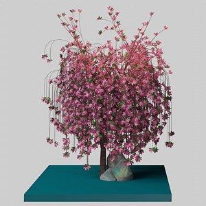 3D weeping rock cherry model