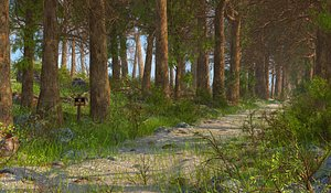 Nature Forest Environment 3D model