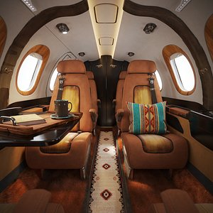 3D Aircraft Interior Ranch Western style