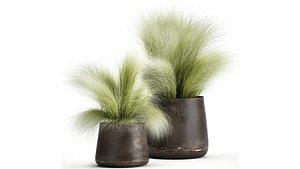 Grass in a Flowerpot for the interior 908 3D
