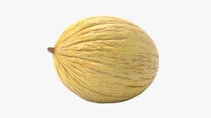 3D Yellow Melon