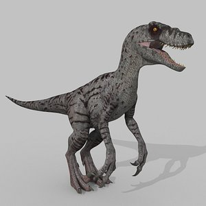 female alpha raptor - 3D model