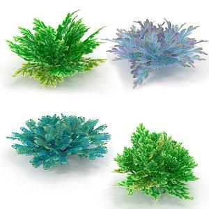 3D Selaginella SET model