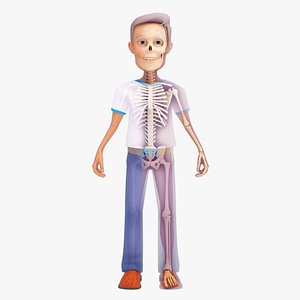 Cartoon Human Skeleton and Male Character model