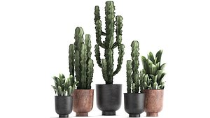 3D ornamental plants pots planter