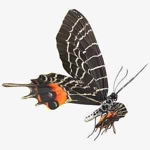 Animated Flight Bhutan Glory Butterfly Rigged 3D model