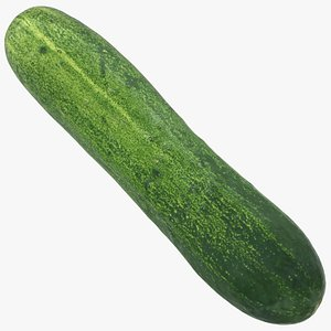 3D food cucumber fruit