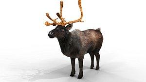 Fur Black Reindeer NO RIG 3D model