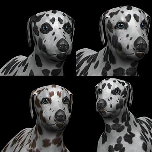 3D fully rigged dalmatian dog model