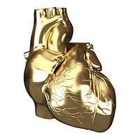 Human Heart Golden