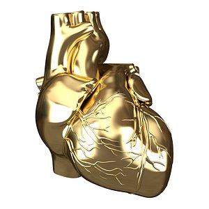 3D Human Heart Golden model