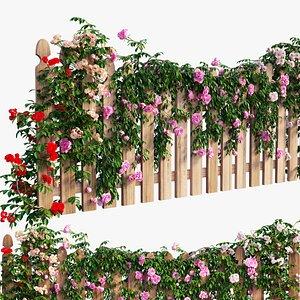 rose plant model