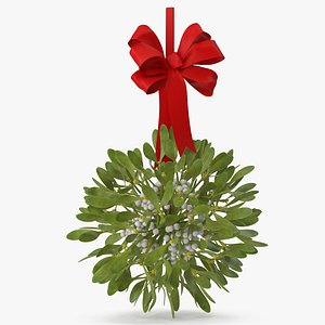 Mistletoe v 2 with Red Bow 3D model