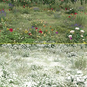 3D 20 grass flowers ground