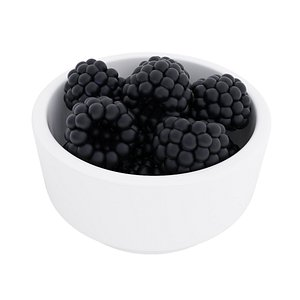 Blackberry bowl 3D model
