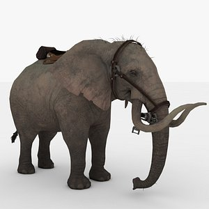 Elephant Rigged and Animated