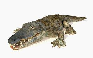 3D alligator rigged crocodile animations