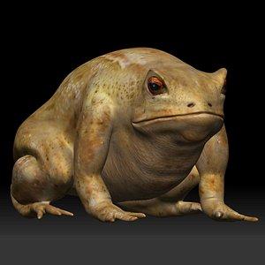 Cane Toad frog bullfrog 3D model