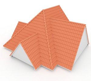 3D Realistic Roof Shingles 10 model