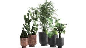plants flowerpot 3D model