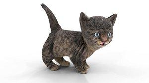 Fur Cute Cat kitten Dark Gray Animated 3D model
