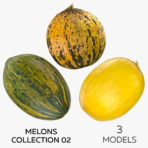 3D Melons Collection 02 - 3 models model