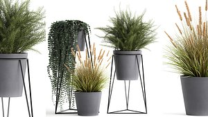 3D Plants in a flowerpot for the interior 946 model