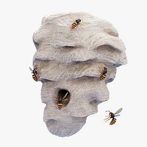 3D Hornets with Nest