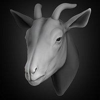 Goat Head 2021