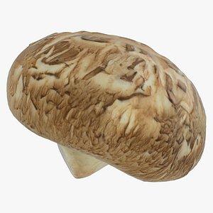 3D shiitake mushroom