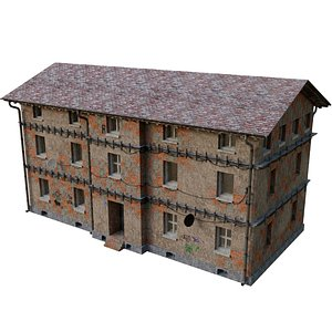village home 3D model