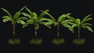 3D 4 banana trees