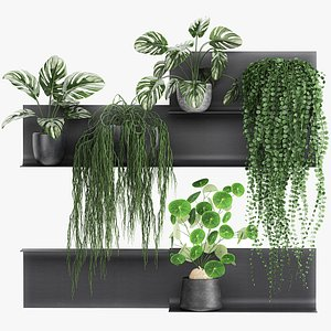 Decorative shelf with flowers in pots 67 3D model