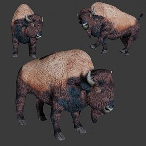 3D fully rigged low poly Bison