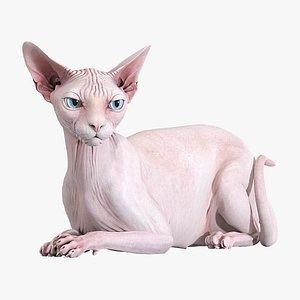 Sphynx Cat Pink Rigged 3D model