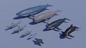 3D sea animals