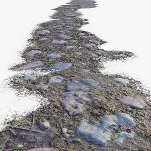 3D old stone path ground
