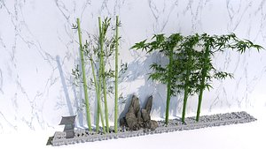 bamboo20210816 3D model