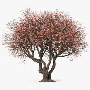 3D twigs rhododendrons model