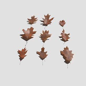 Dry Red Oak Leaves Pack 3D