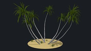 tree nature palm 3D model