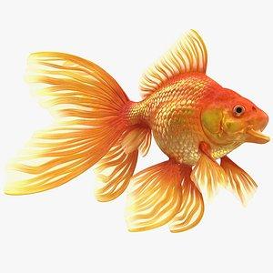 3D Orange Fancy Fantail Goldfish Rigged for Maya model