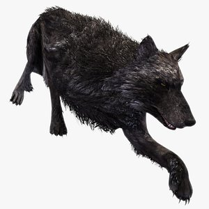 3D Wolf Rigged Animated